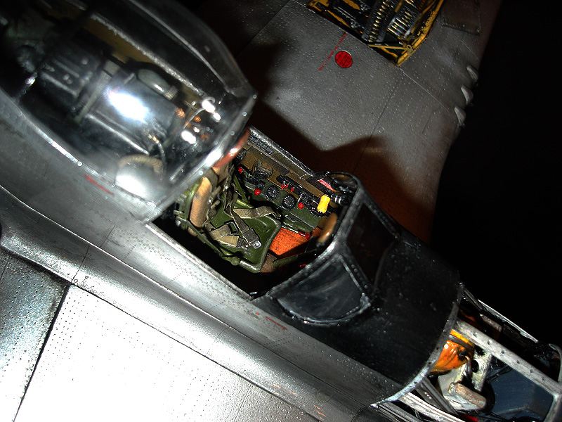 Trumpeter 1 24 Scale P 51d Mustang Quot King Leonidas Quot Large