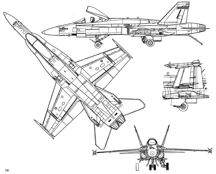 A 18 Hornet Walk Around