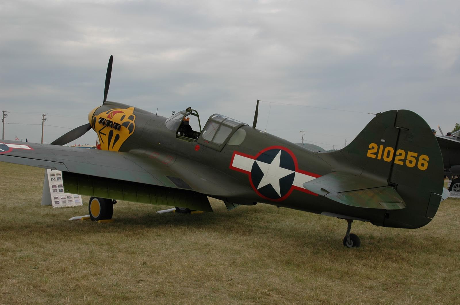 P-40 Walkaround   Large Scale Planes